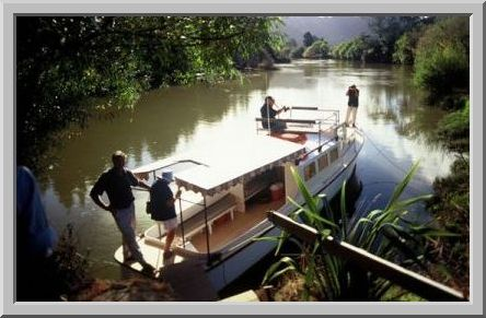 Mokau River Cruises stops off for lunch